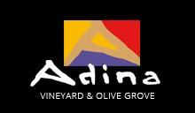 Adina-Full-Colour-Logo.png
